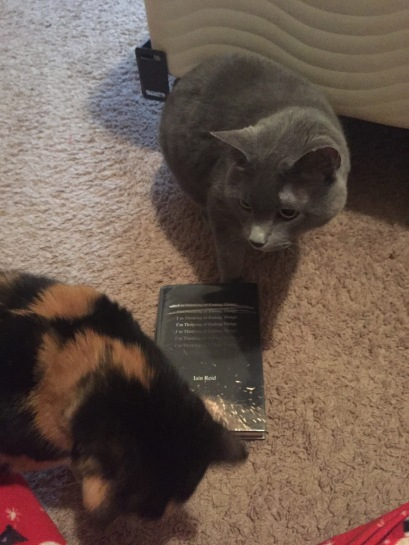 My first attempt at taking a picture of the book. Thanks cats.